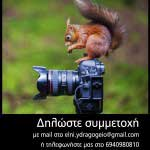 foto-lesxi15